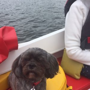 Having A Great Day At Windermere, Enjoying Boat Ride